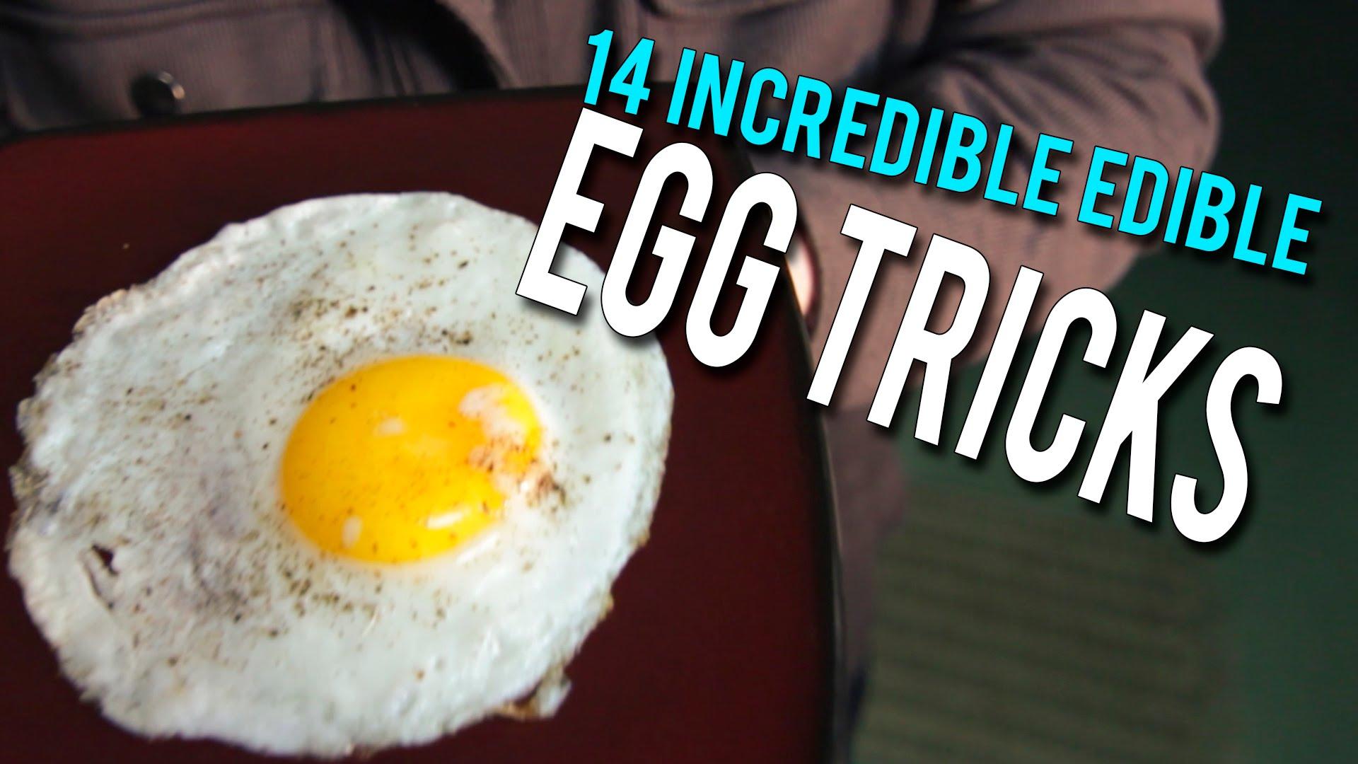 14 Incredible Edible EGG Tricks!